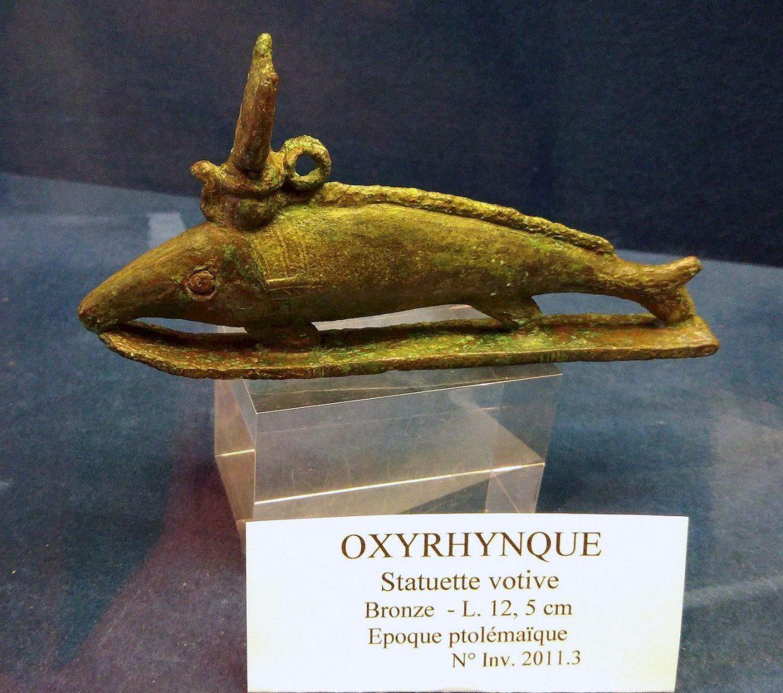 Oxyrhynque, époque ptolémaïque, Musée Josèphe Jacquiot, Montgeron (Essonne)